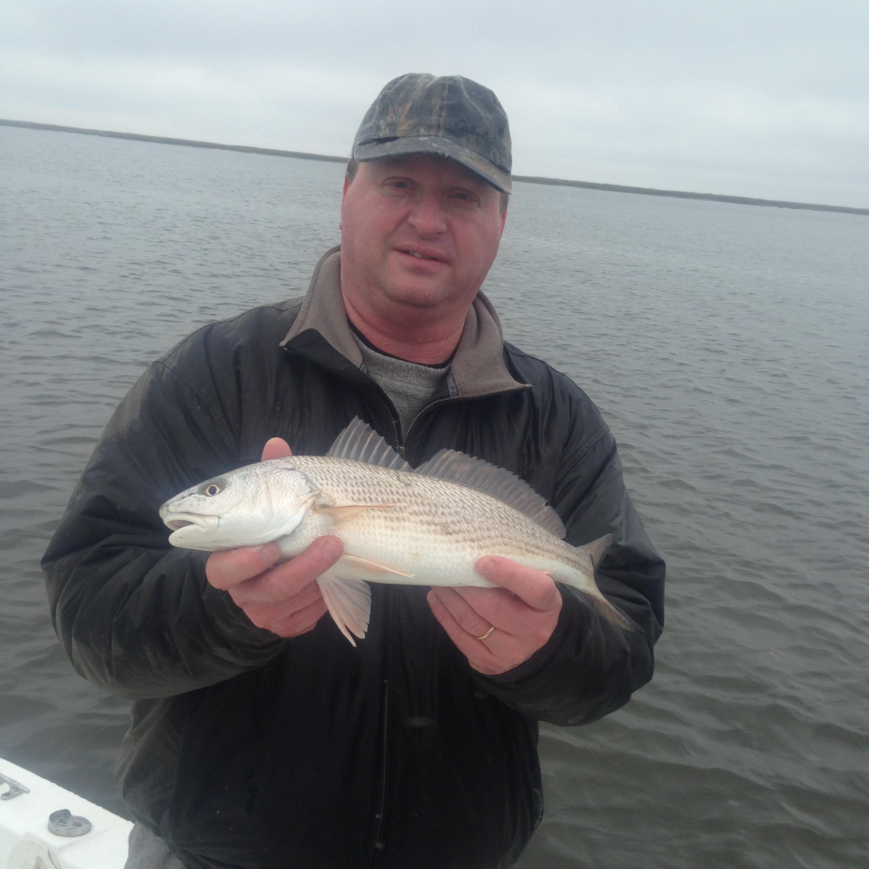 Greg Colline catching some schoolie reds on mud minnows!
